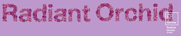 Radiant Orchid header